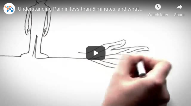Understanding pain in less than 5 minutes